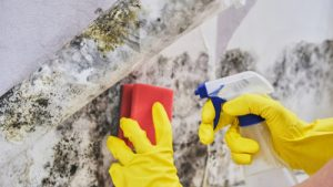 Does water damage always mean mold