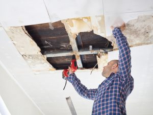 how to prevent mold after water damage